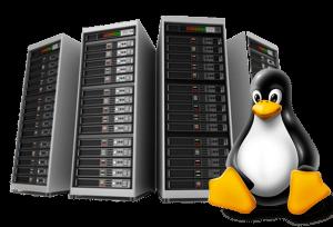 linux hosting server
